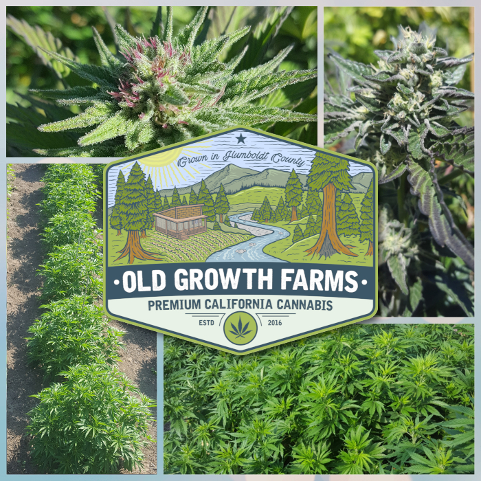 Grown in Humboldt County